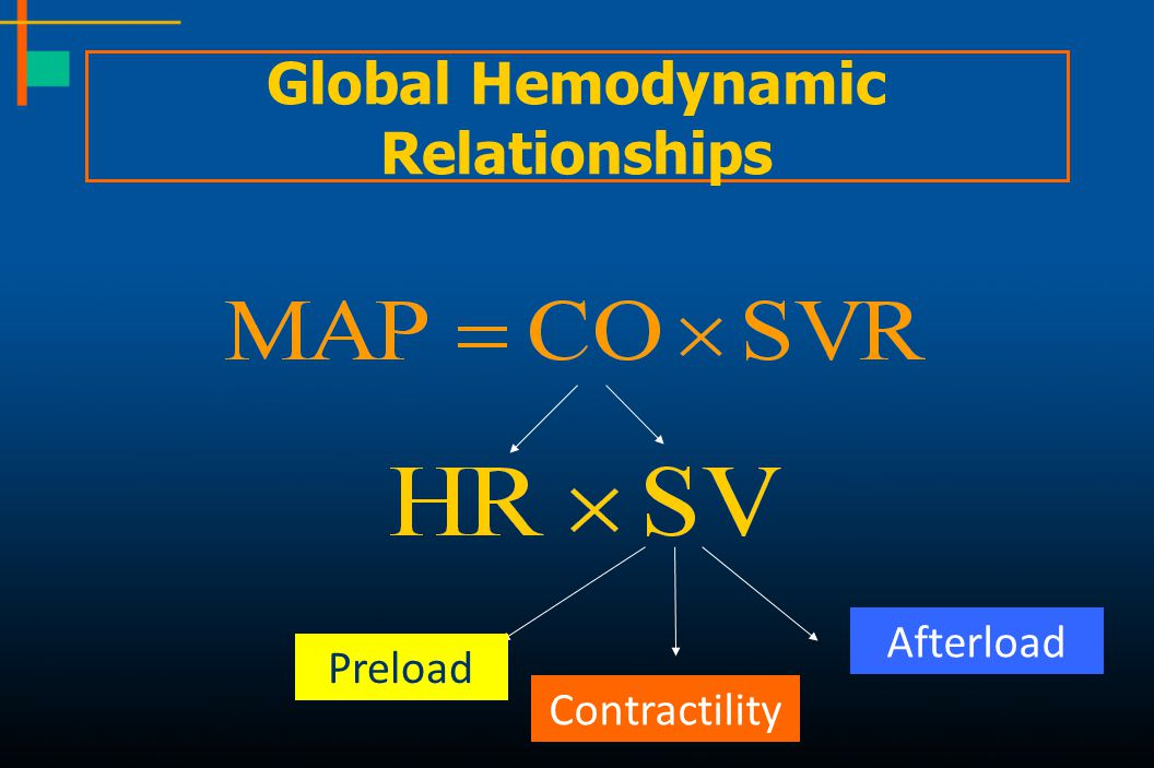 Global Hemodynamic Relationships