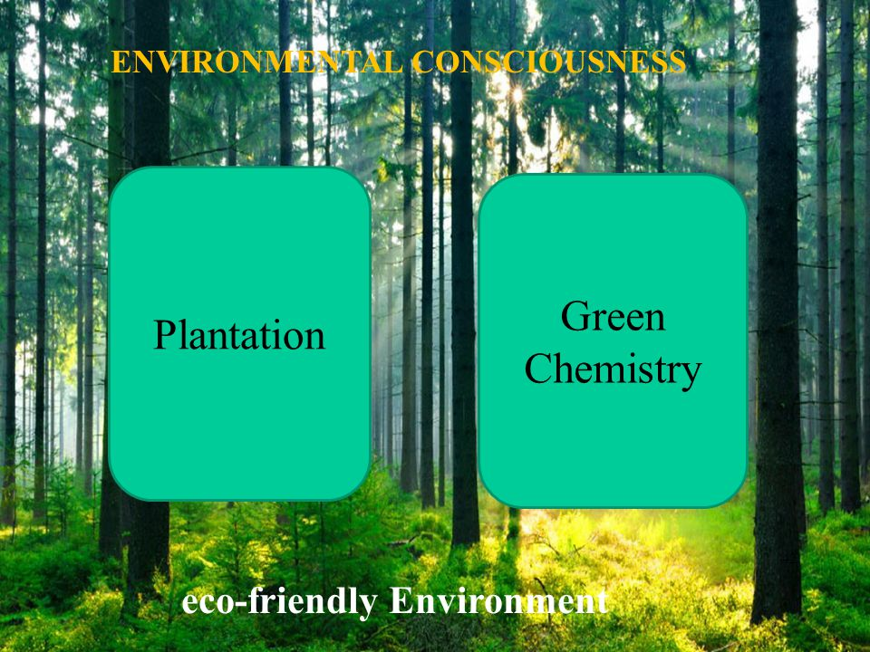 ENVIRONMENTAL CONSCIOUSNESS eco-friendly Environment
