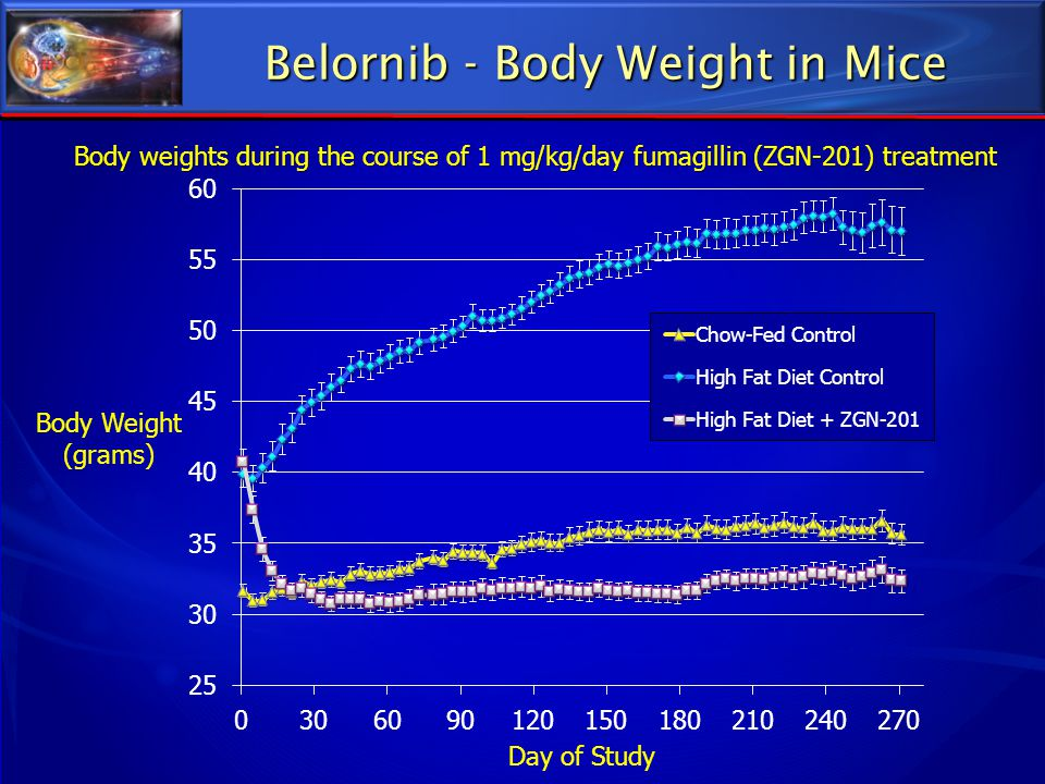 Belornib - Body Weight in Mice
