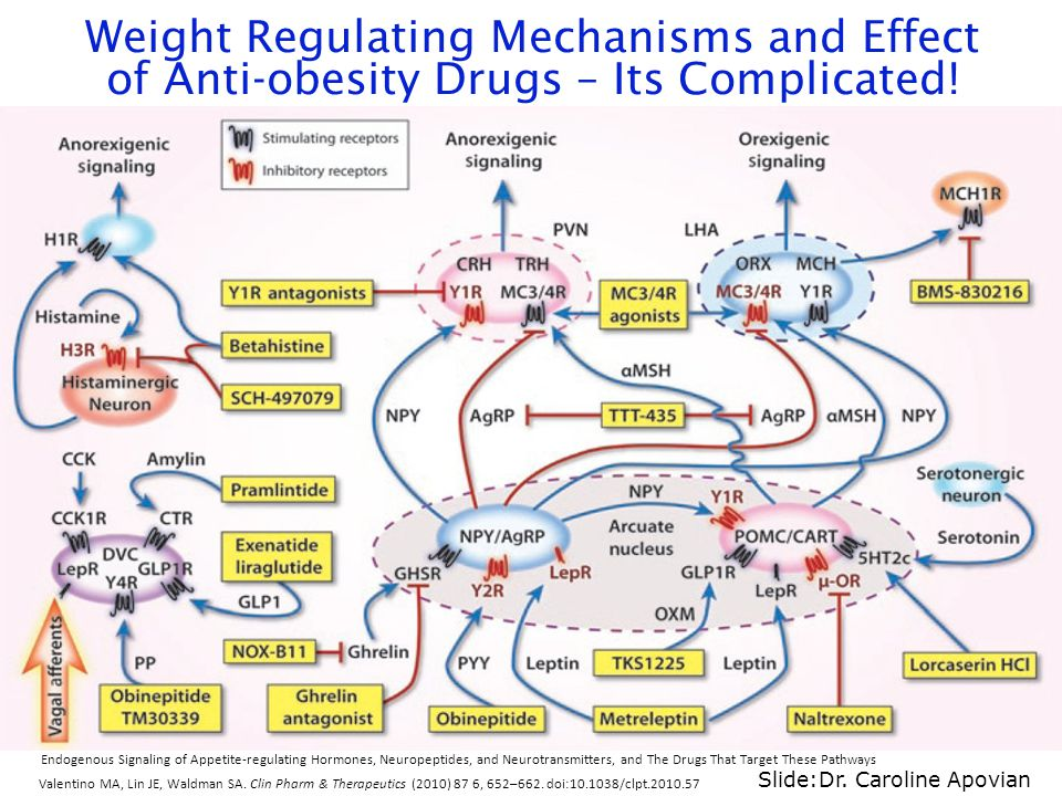 Weight Regulating Mechanisms and Effect of Anti-obesity Drugs – Its Complicated!
