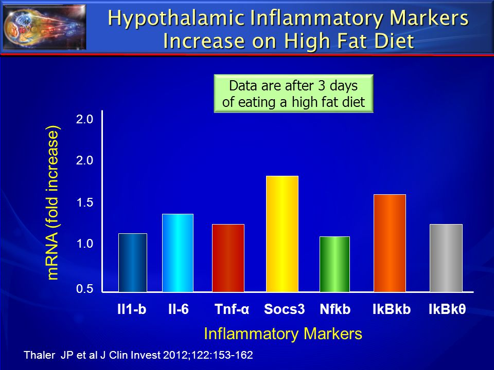 Hypothalamic Inflammatory Markers Increase on High Fat Diet