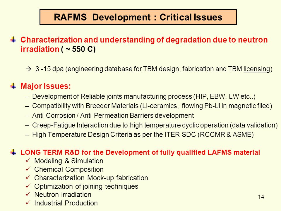 RAFMS Development : Critical Issues