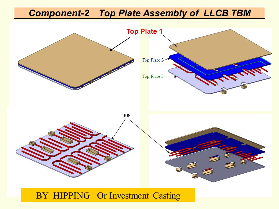 Component-2 Top Plate Assembly of LLCB TBM