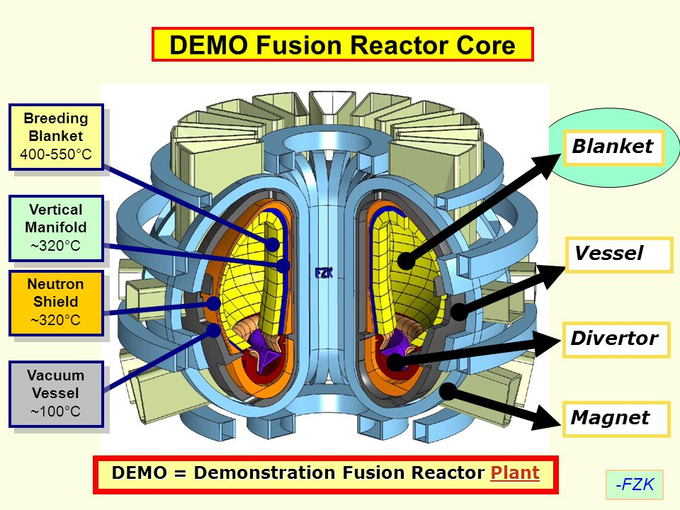DEMO Fusion Reactor Core