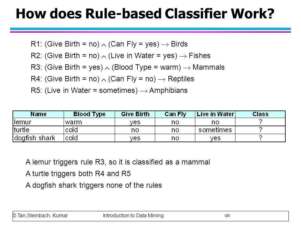 How does Rule-based Classifier Work