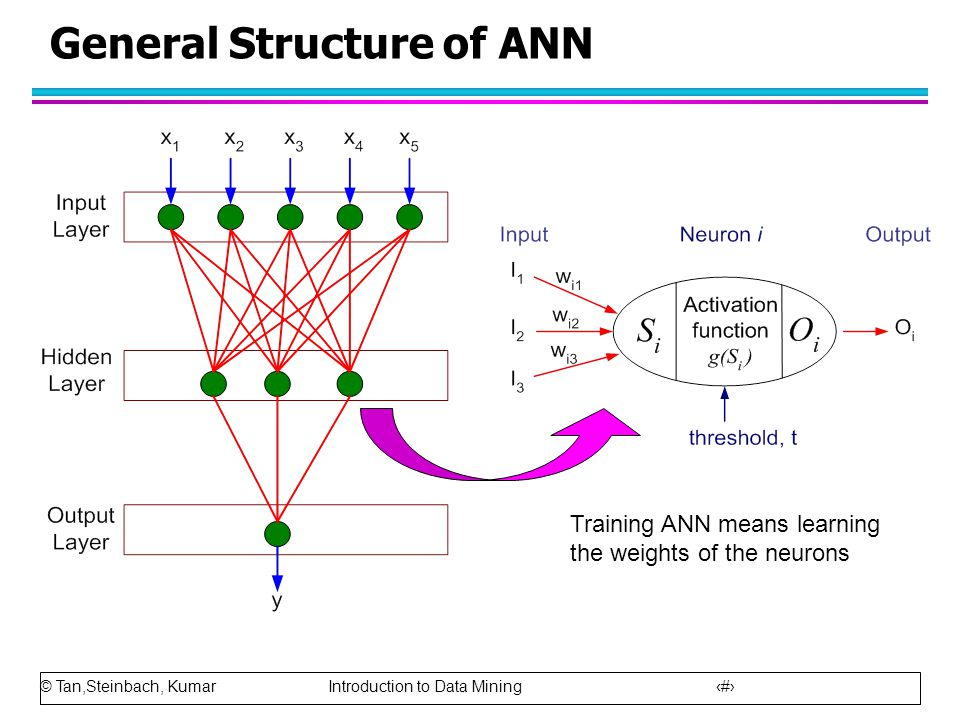 General Structure of ANN