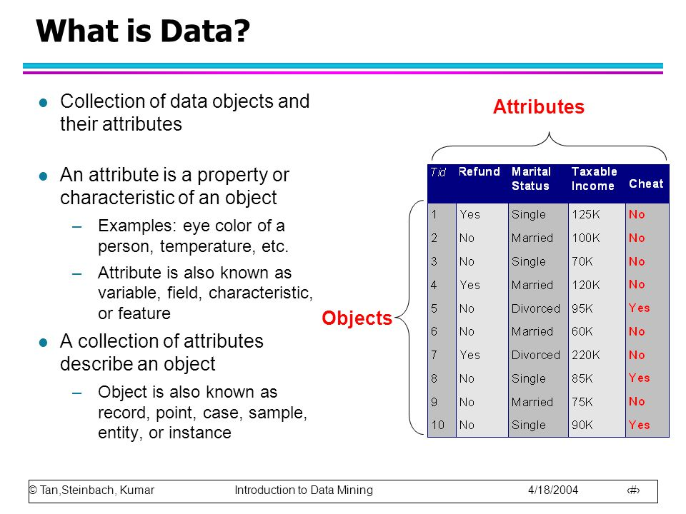 What is Data Collection of data objects and their attributes