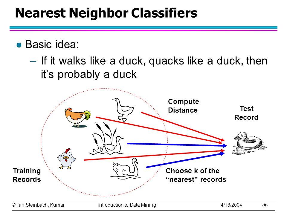 Nearest Neighbor Classifiers