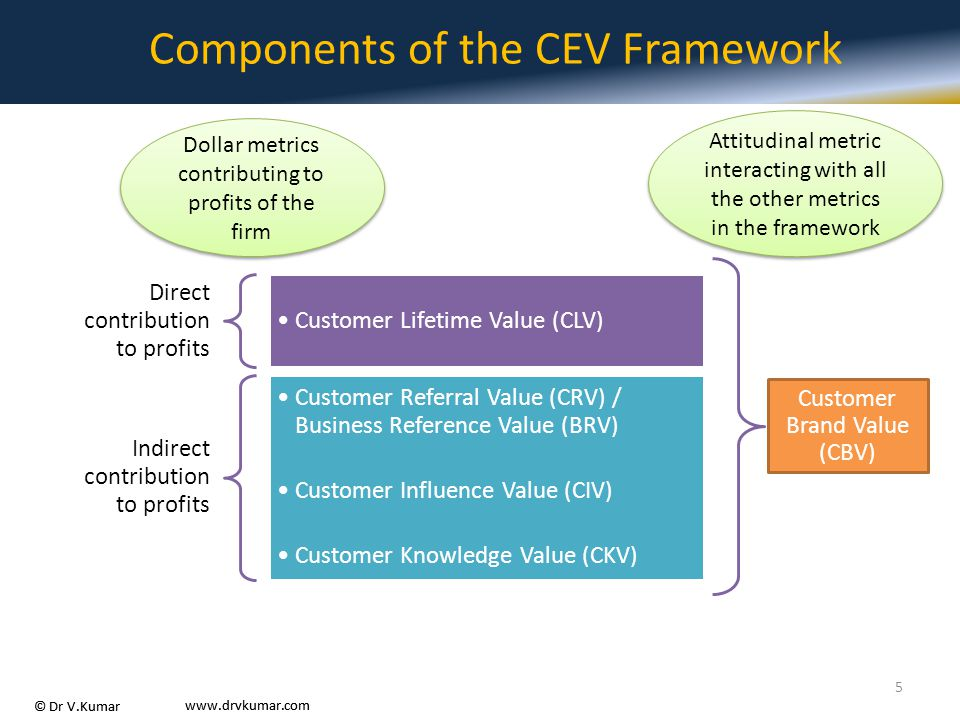 Components of the CEV Framework