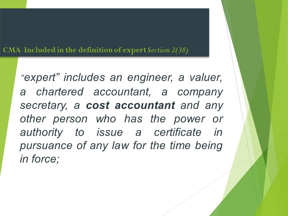 CMA Included in the definition of expert Section 2(38)