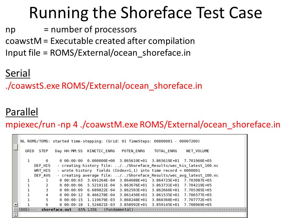 Running the Shoreface Test Case