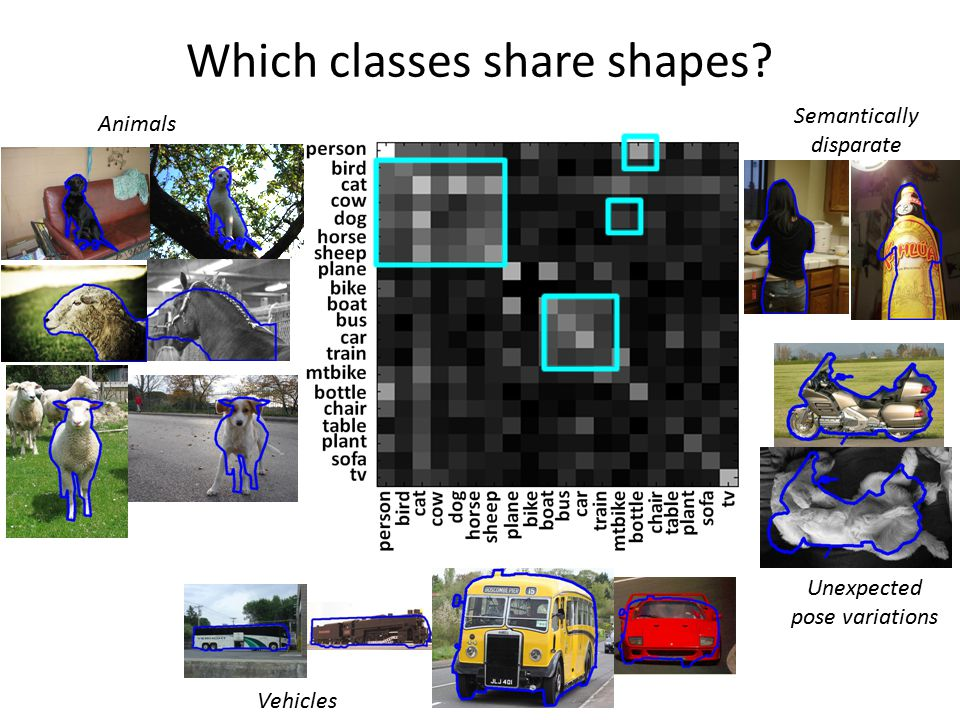 Which classes share shapes