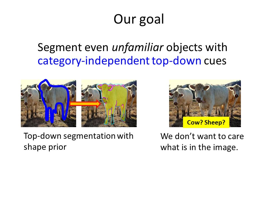 Our goal Segment even unfamiliar objects with category-independent top-down cues. Cow Sheep Top-down segmentation with shape prior.