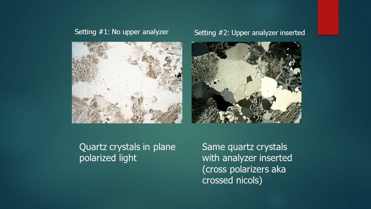 Quartz crystals in plane polarized light