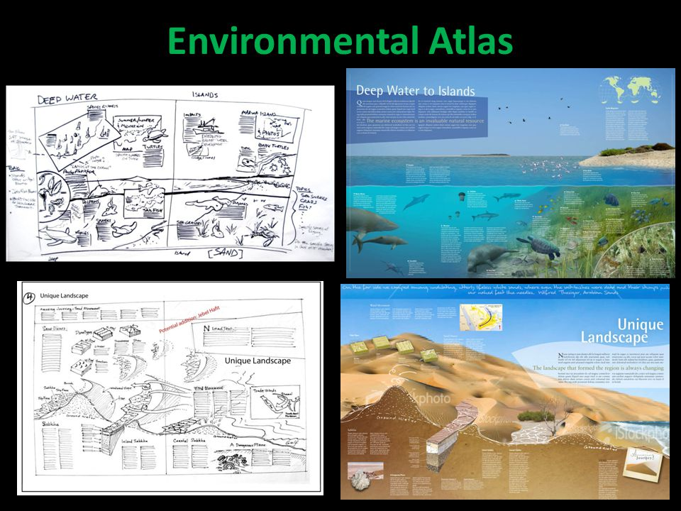 Environmental Atlas