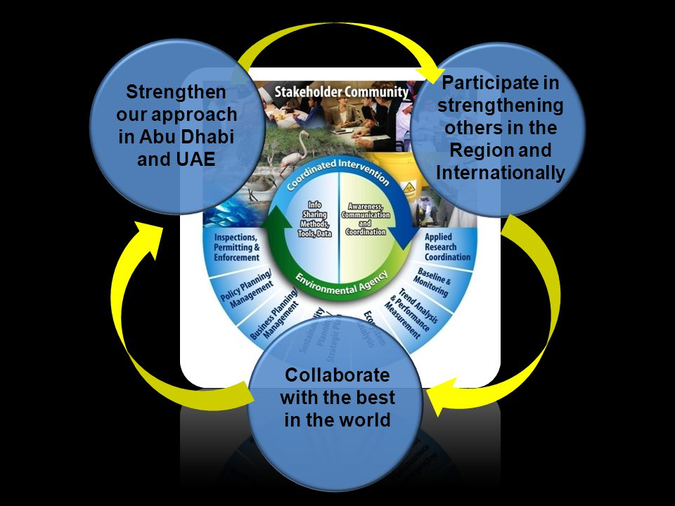 Participate in strengthening others in the Region and Internationally