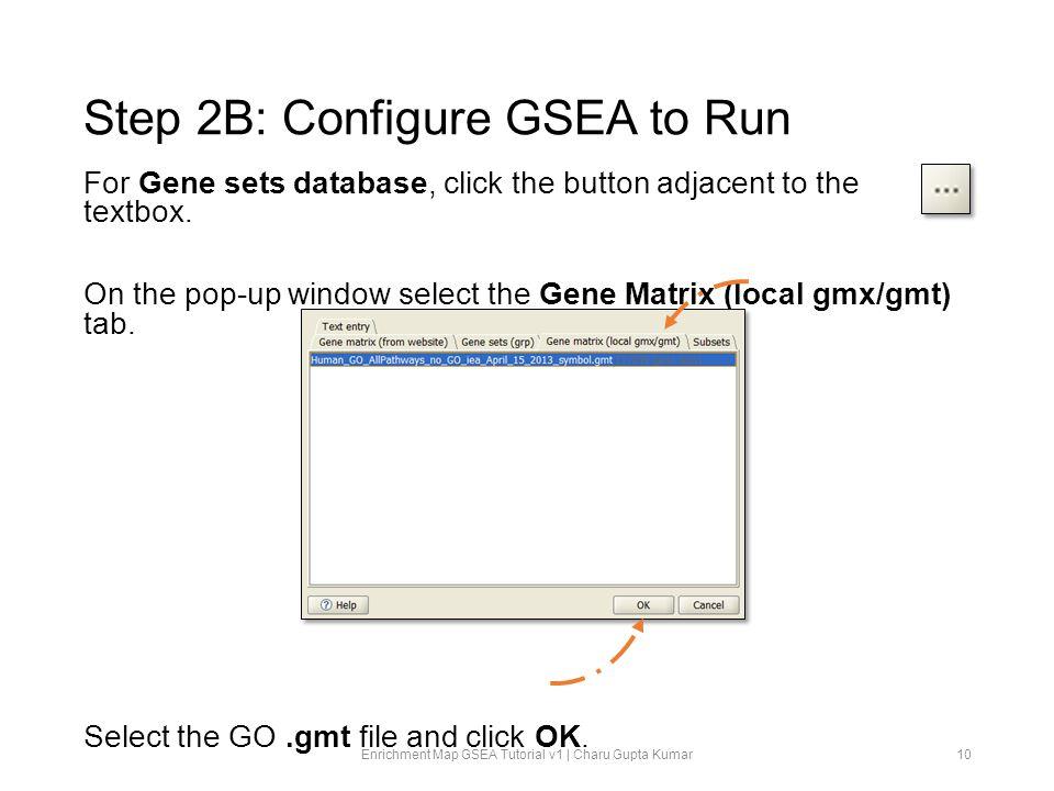 Step 2B: Configure GSEA to Run