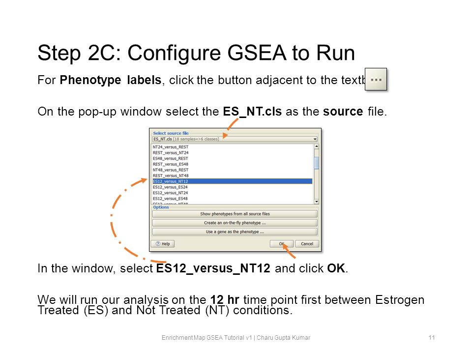 Step 2C: Configure GSEA to Run