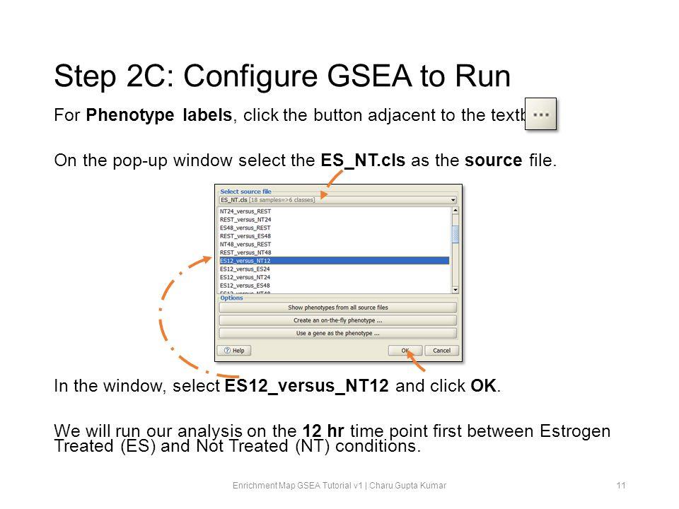 Step 2C: Configure GSEA to Run