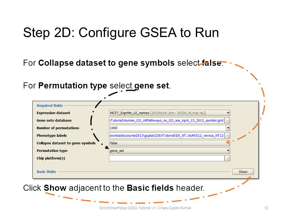 Step 2D: Configure GSEA to Run