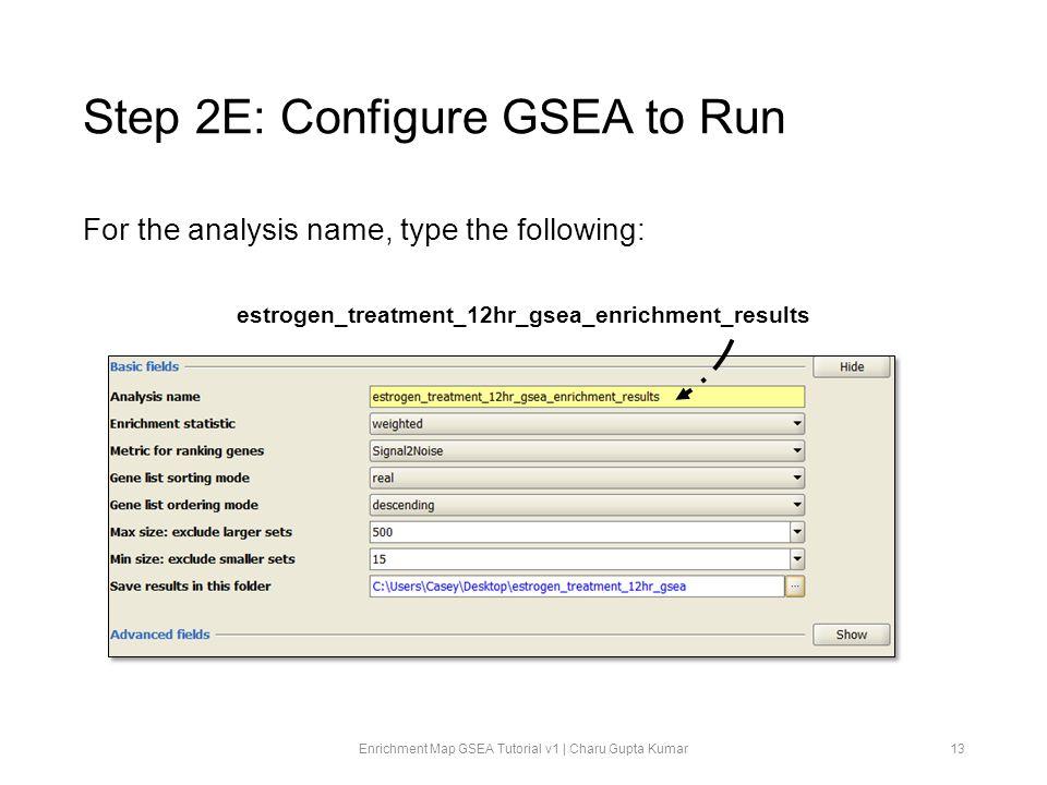 Step 2E: Configure GSEA to Run