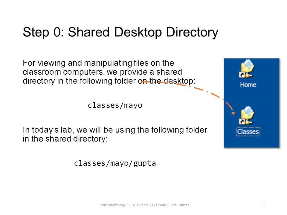 Step 0: Shared Desktop Directory