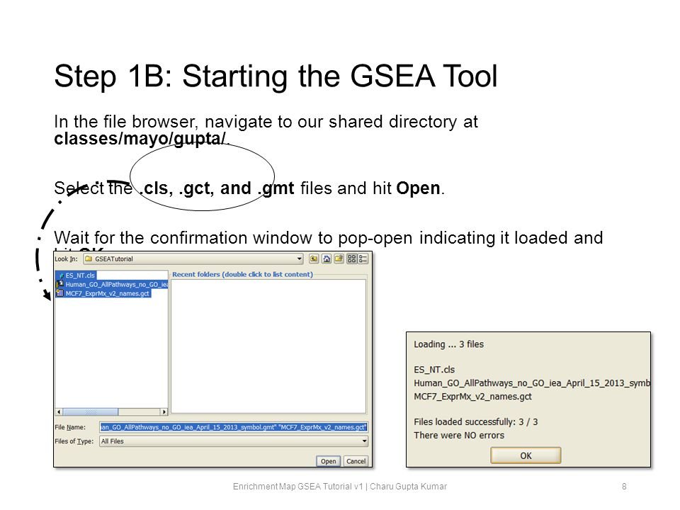 Step 1B: Starting the GSEA Tool