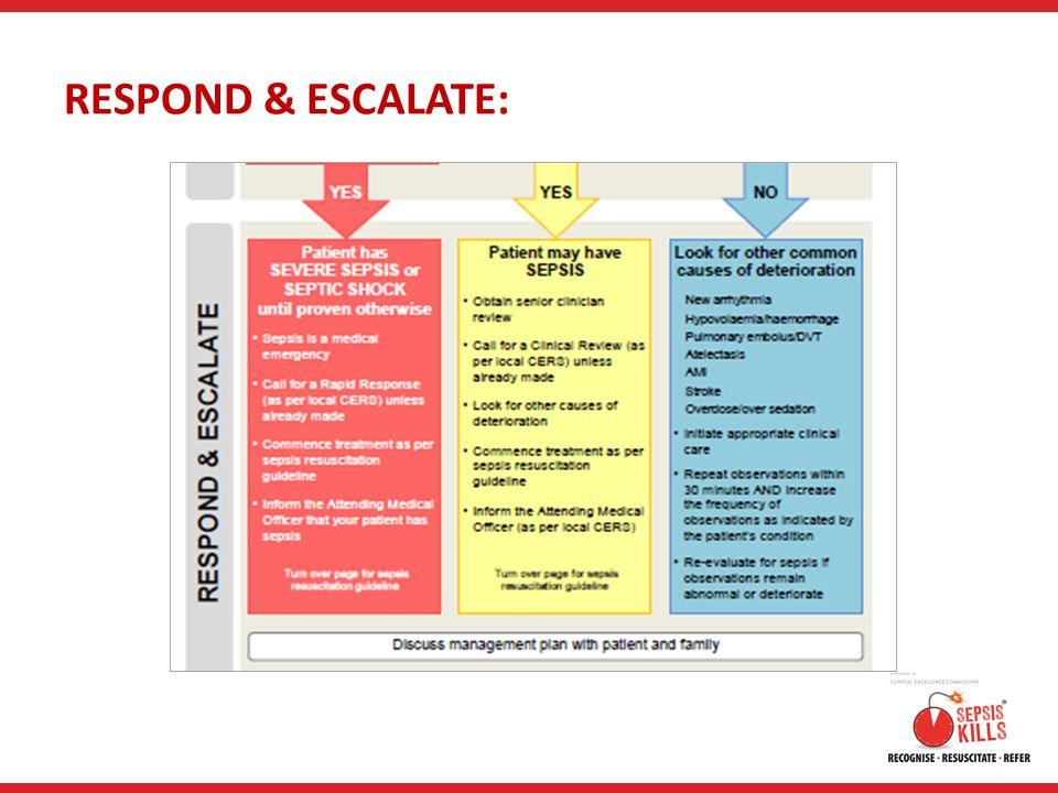 RESPOND & ESCALATE: RESPOND & ESCALATE