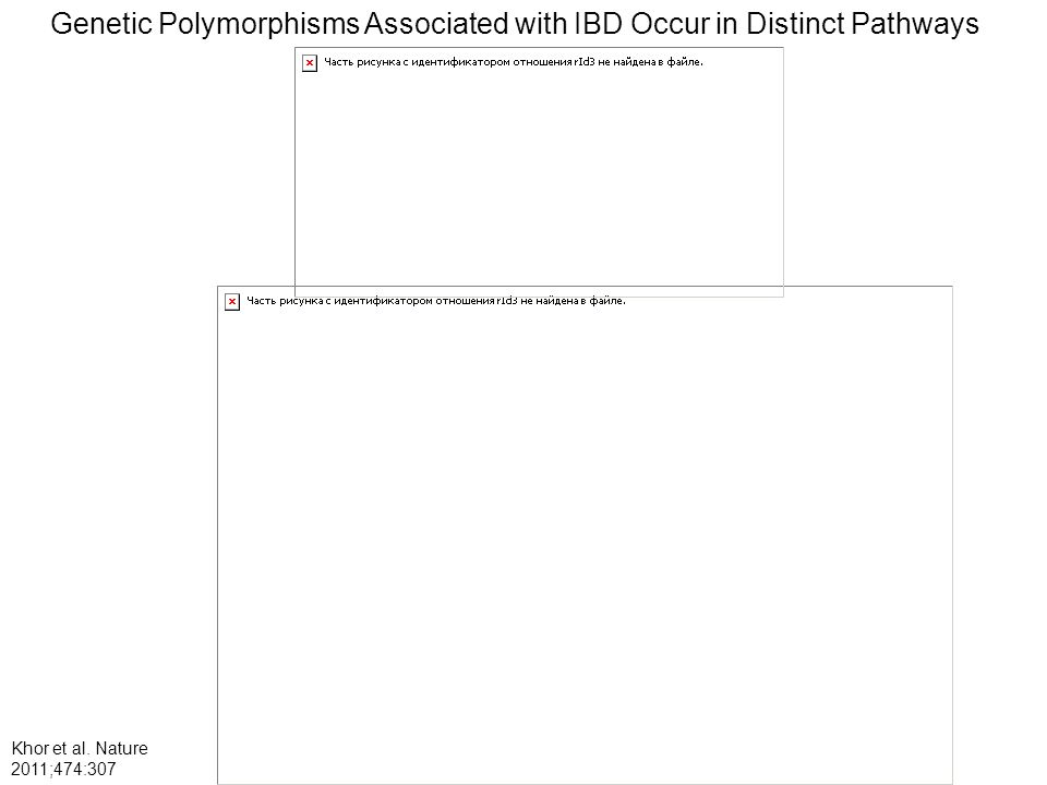 Genetic Polymorphisms Associated with IBD Occur in Distinct Pathways