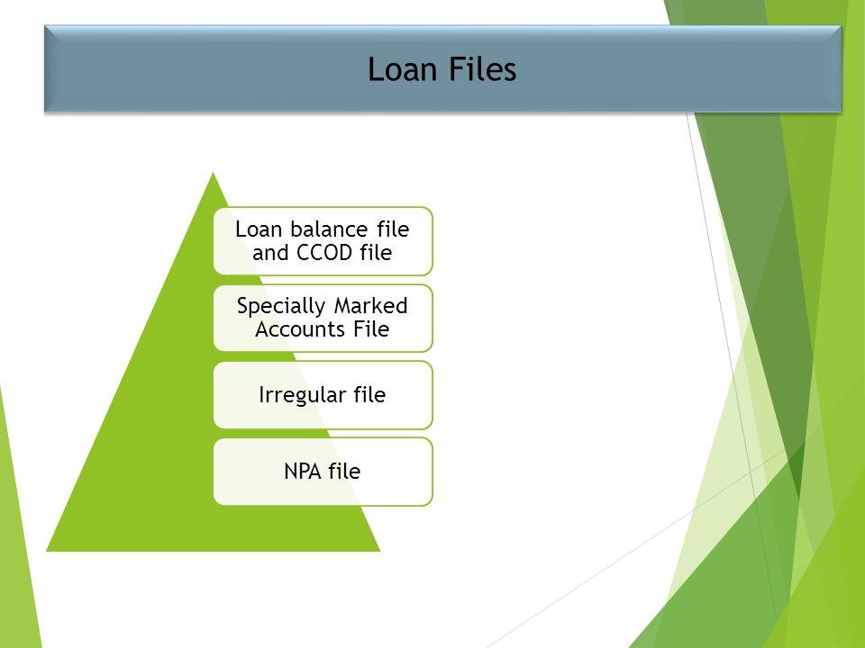 Loan Files Loan balance file and CCOD file