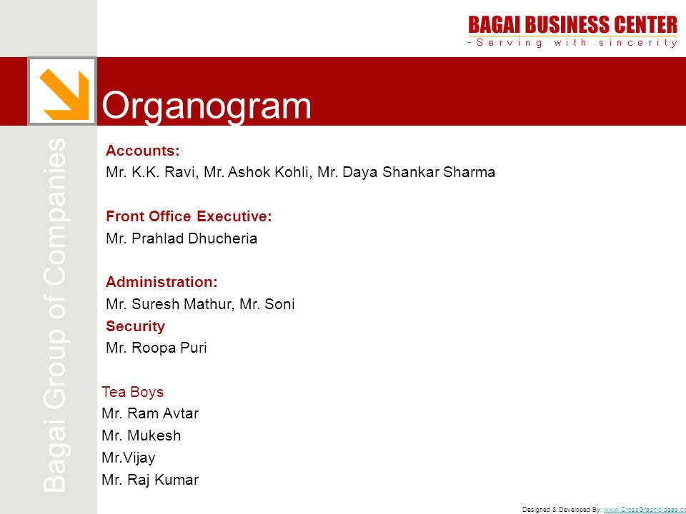 Organogram Bagai Group of Companies Accounts: