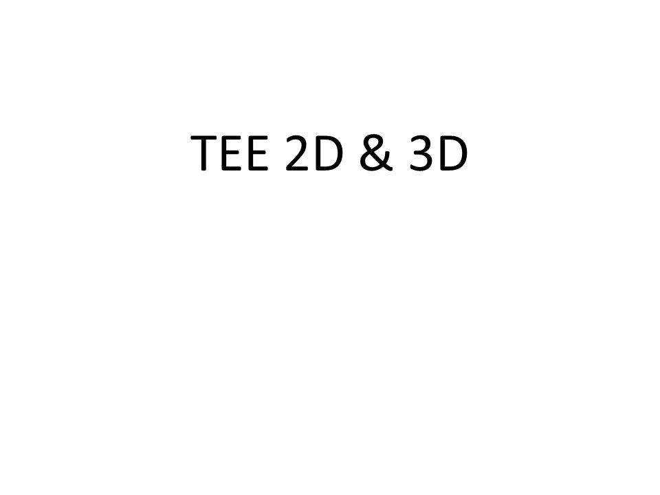 TEE 2D & 3D