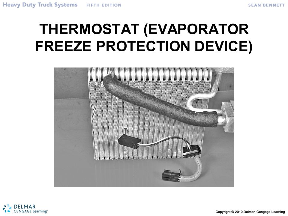 THERMOSTAT (EVAPORATOR FREEZE PROTECTION DEVICE)