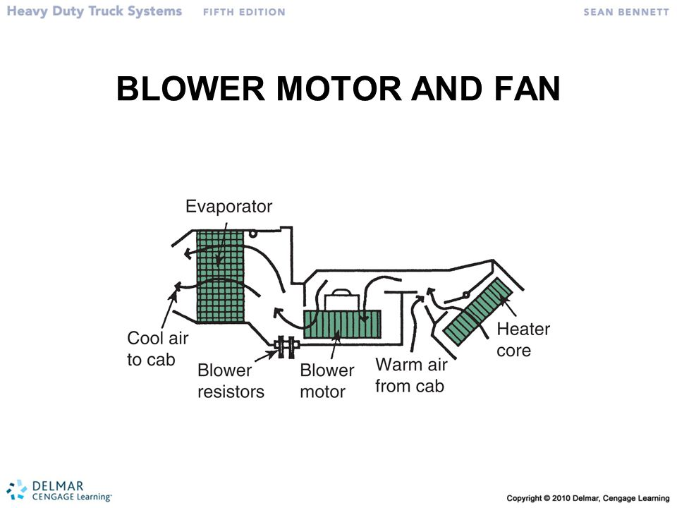 BLOWER MOTOR AND FAN