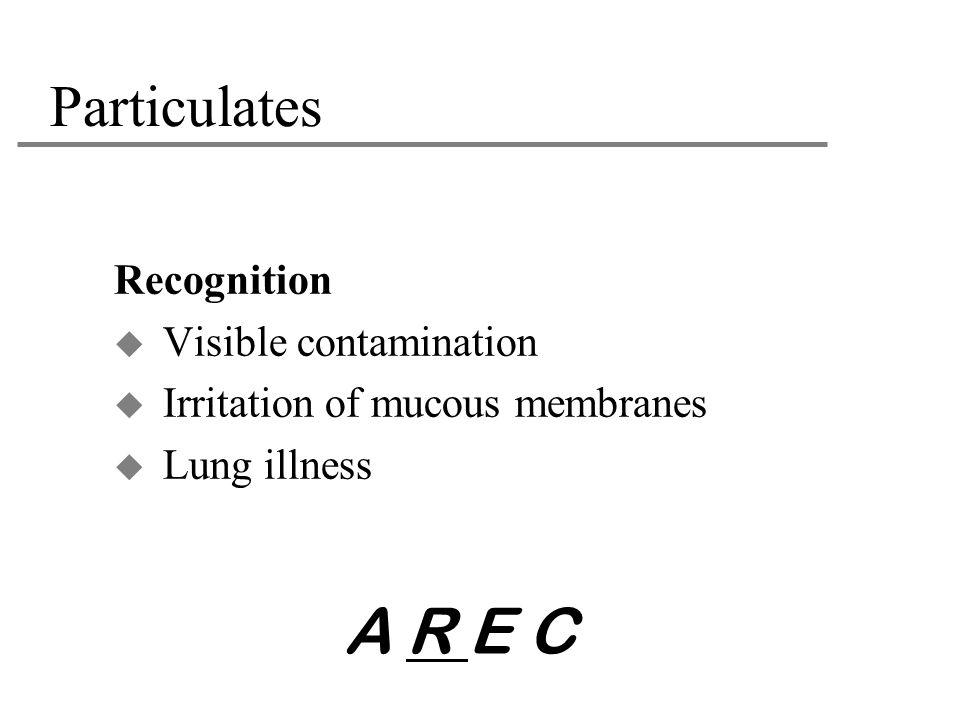 A R E C Particulates Recognition Visible contamination