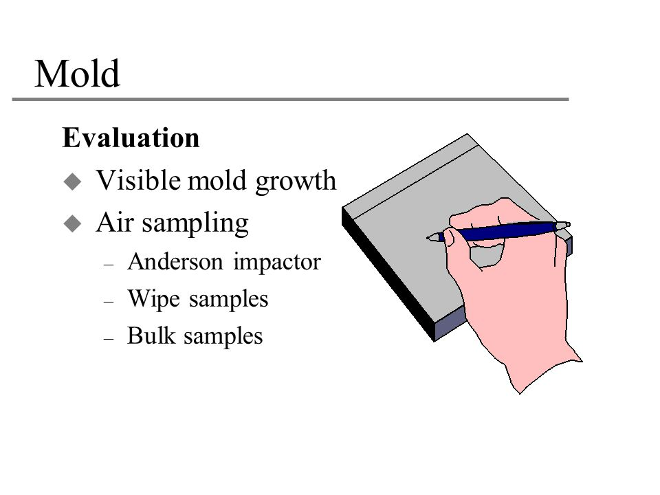 Mold Evaluation Visible mold growth Air sampling Anderson impactor
