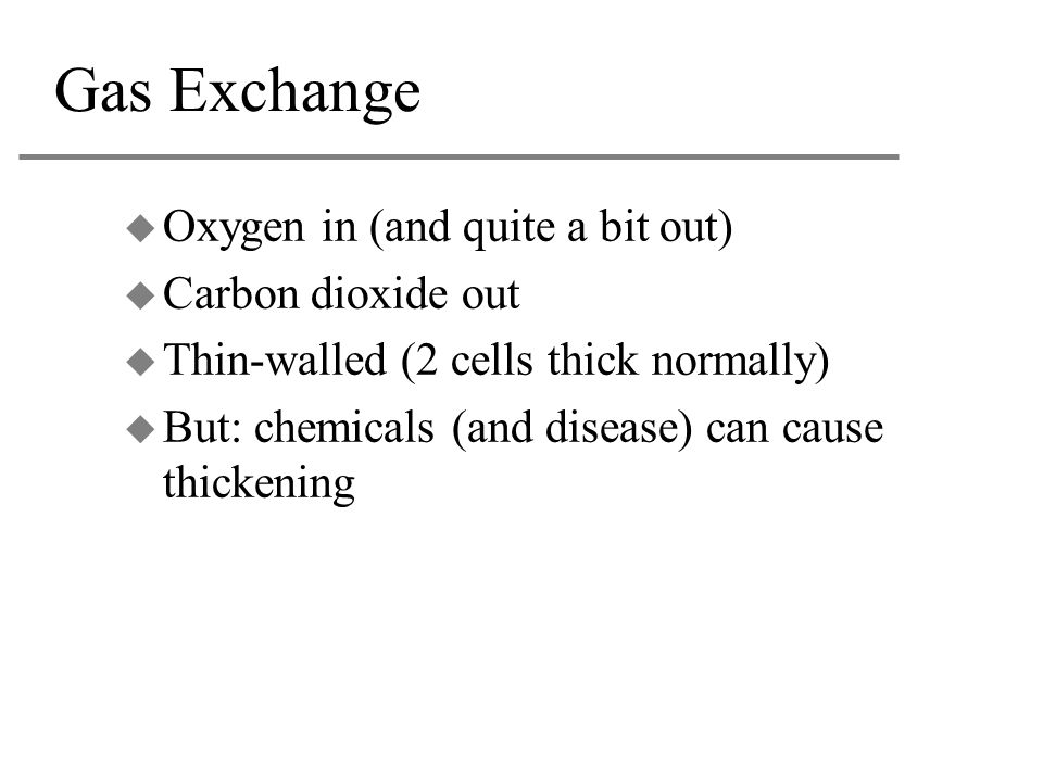 Gas Exchange Oxygen in (and quite a bit out) Carbon dioxide out