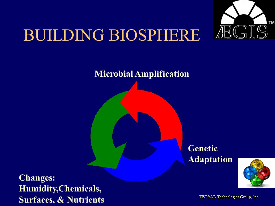 BUILDING BIOSPHERE Microbial Amplification Genetic Adaptation Changes: