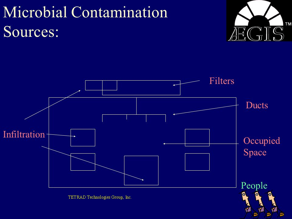 Microbial Contamination Sources: