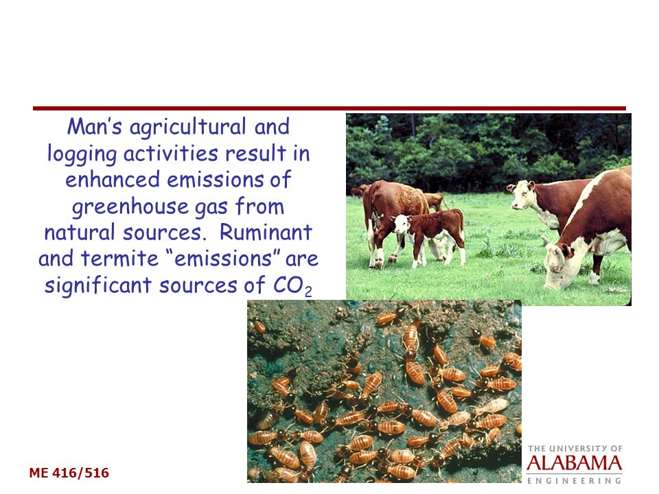 Man's agricultural and logging activities result in enhanced emissions of greenhouse gas from natural sources.