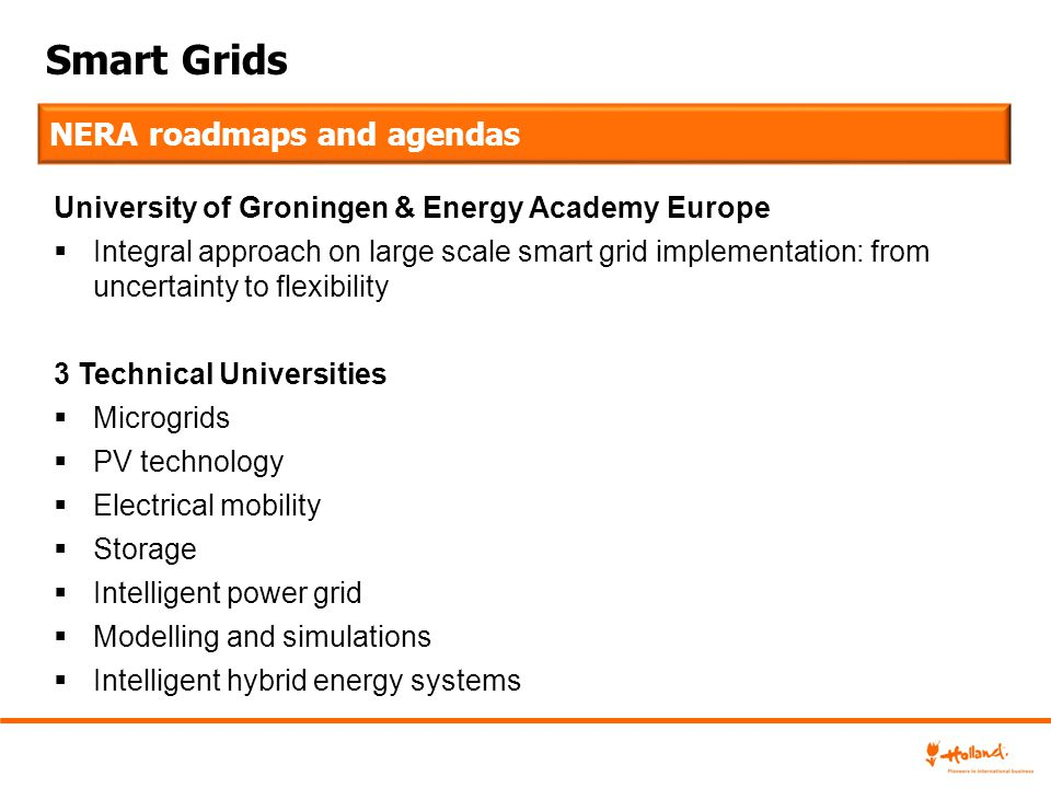 Smart Grids NERA roadmaps and agendas