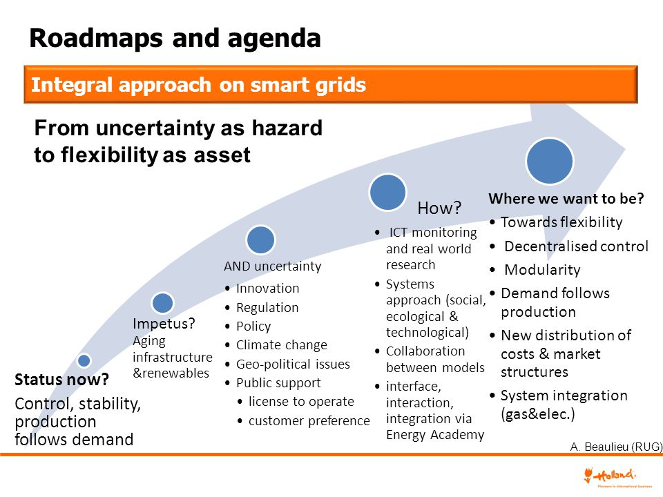 Roadmaps and agenda From uncertainty as hazard to flexibility as asset