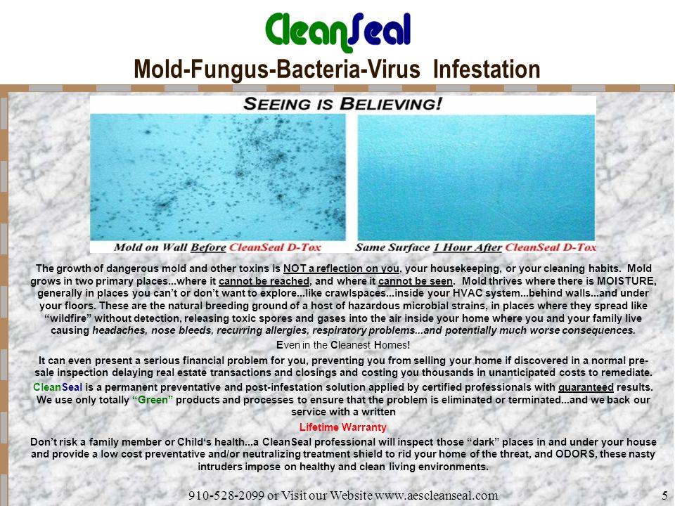 Mold-Fungus-Bacteria-Virus Infestation