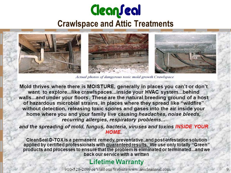 Crawlspace and Attic Treatments