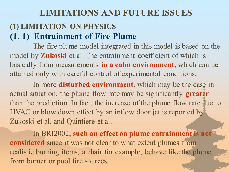 LIMITATIONS AND FUTURE ISSUES