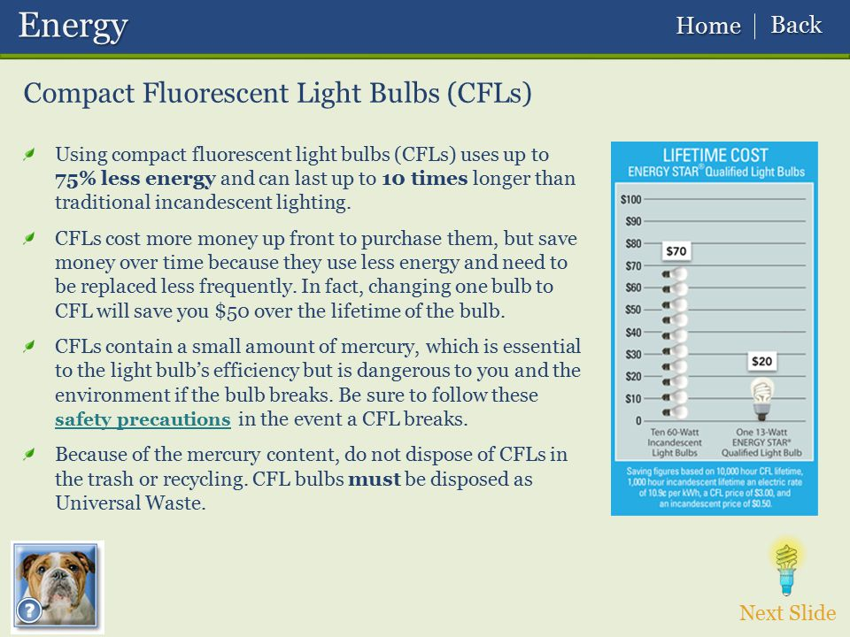 Energy Compact Fluorescent Light Bulbs (CFLs) Back Home Next Slide