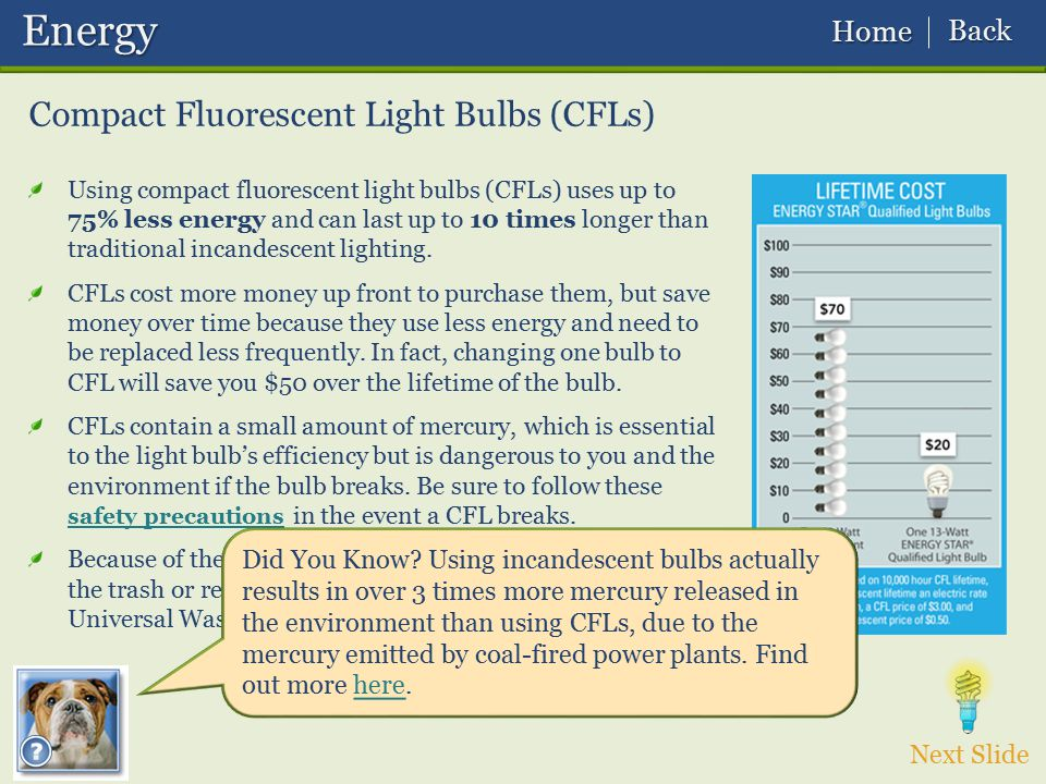 Energy Compact Fluorescent Light Bulbs (CFLs) Back Home