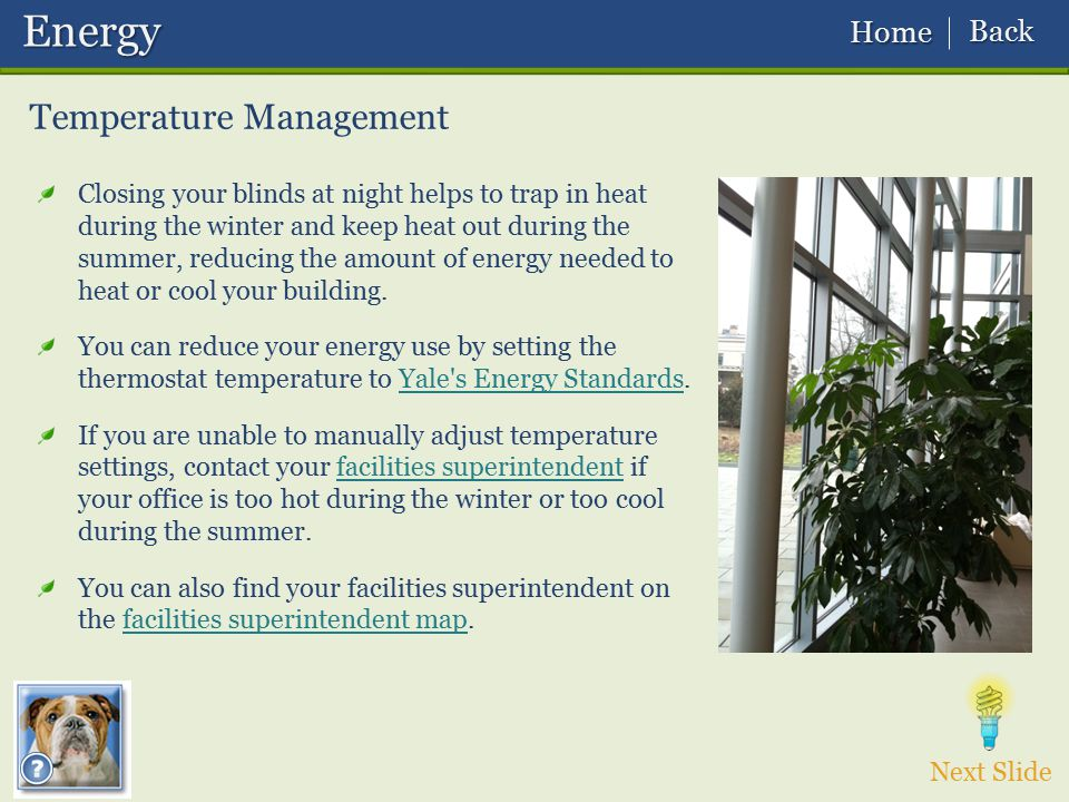 Energy Temperature Management Back Home