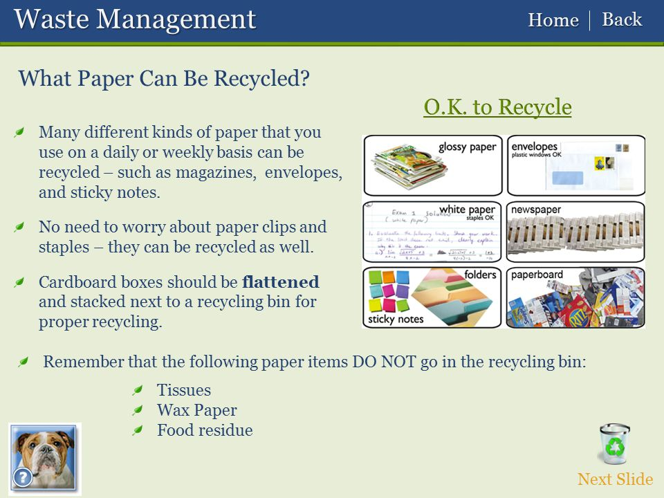 Waste Management What Paper Can Be Recycled O.K. to Recycle Back Home