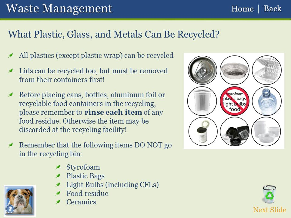 Waste Management What Plastic, Glass, and Metals Can Be Recycled Back